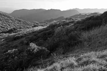 Topanga Canyon State Park in B&W