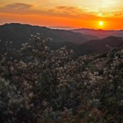 Beautiful sunset from the Santa Monica Mountains near Corral Canyon road