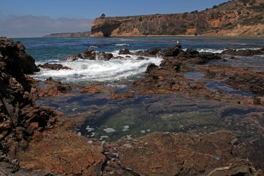 Rancho Palos Verdes Tidal Pools