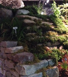 Retaining walls with plants