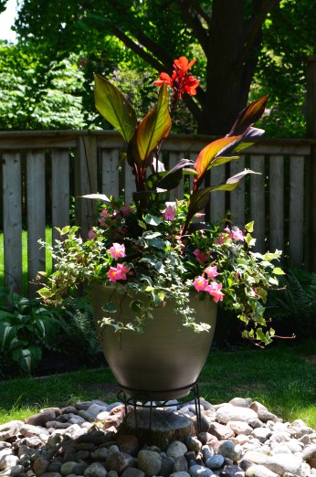 An elegant container planting is positioned to cover a stump in a small urban garden.
