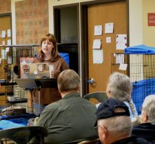 Reading for cats and people at the Humane Society