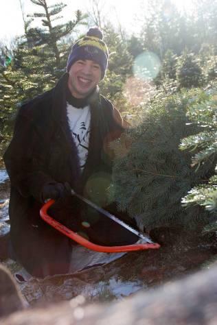 Rob cuts down the tree