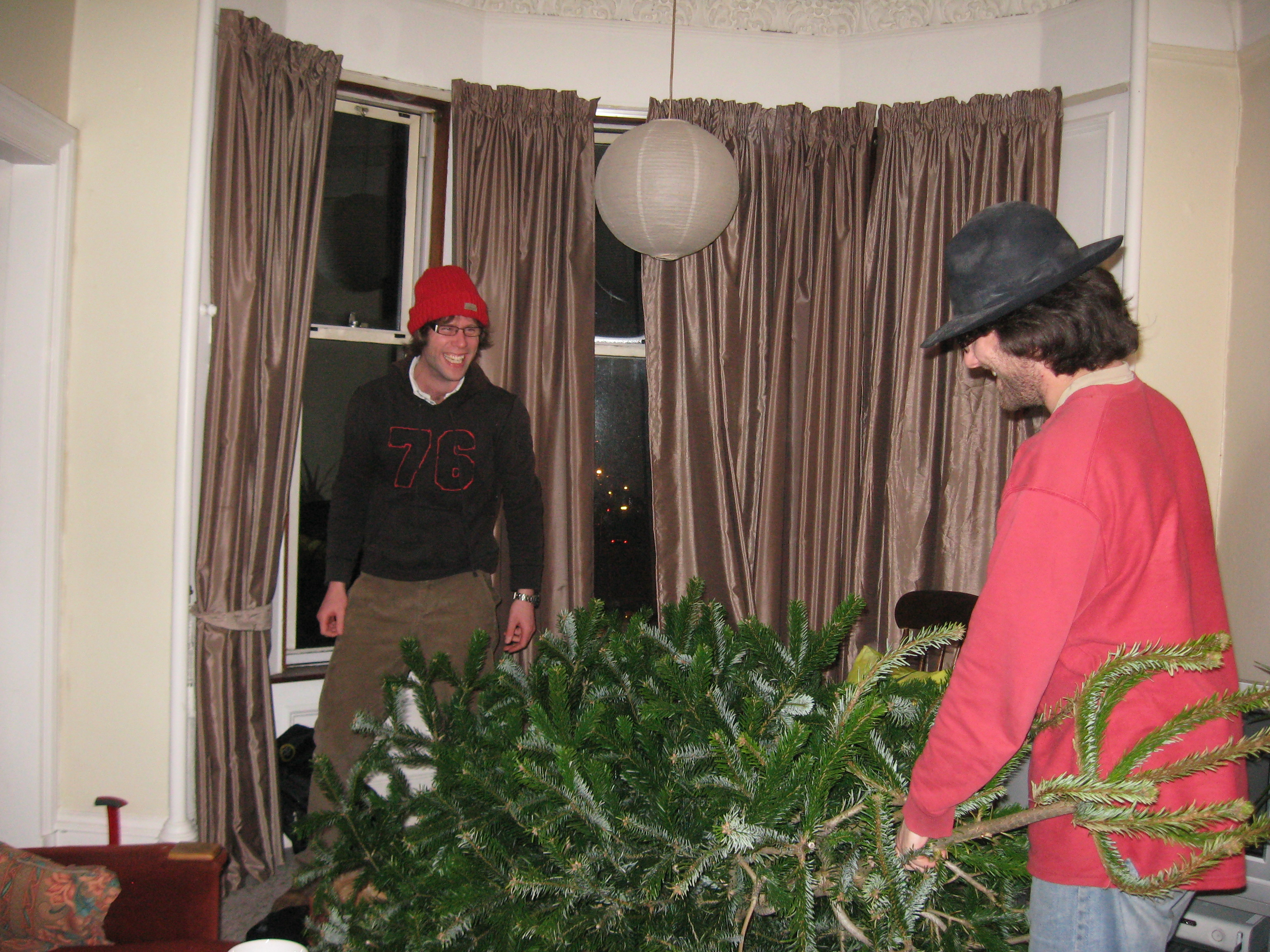 Luckily, AlK was to hand. So AlC and AlK put on their saftey hats and knocked the tree over