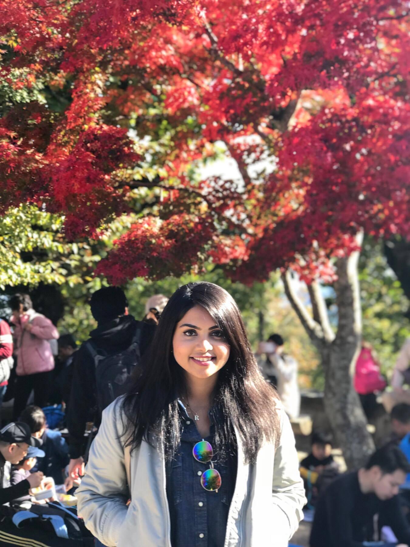 Autumn Foliage from Mt. Takao