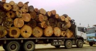 Truk pengangkut kayu