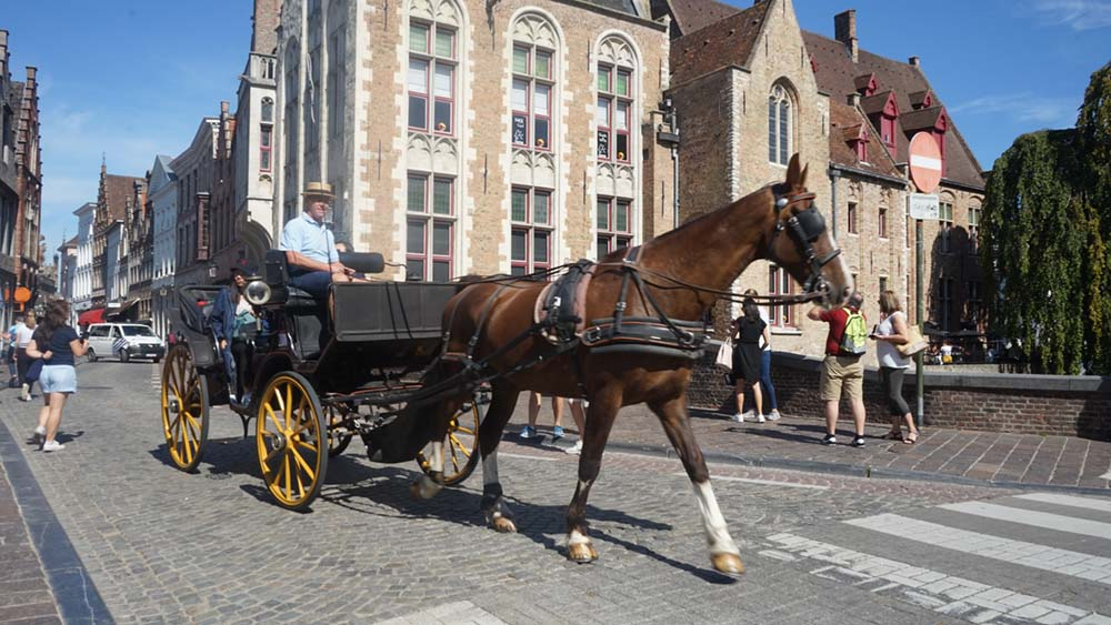 Take a horse and cart around Bruges