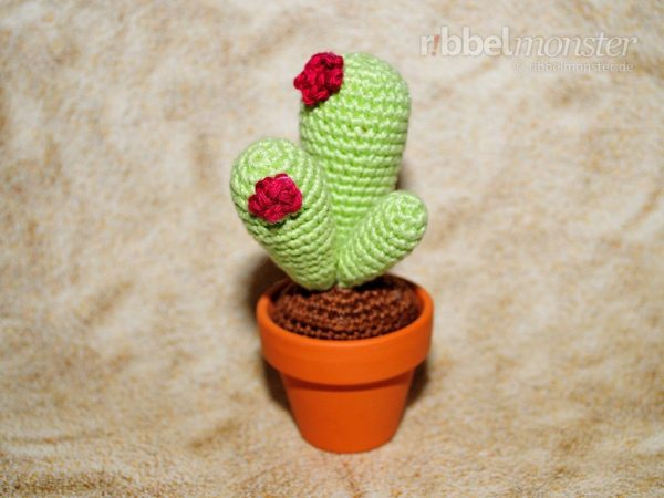 Amigurumi - Kaktus häkeln - Olig - Anleitung - Häkelanleitung