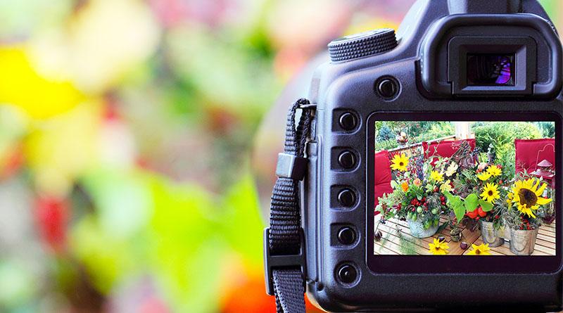 Saiba como funciona o Foco Automático de uma câmera