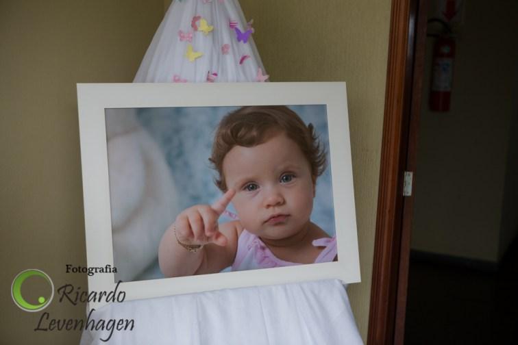 1-ano-Anne---20141129--1-fotografo-su-de-minas-new-bow-recém-nascido-