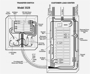 50 Amp Transfer Switch Wiring Diagram | Free Wiring Diagram