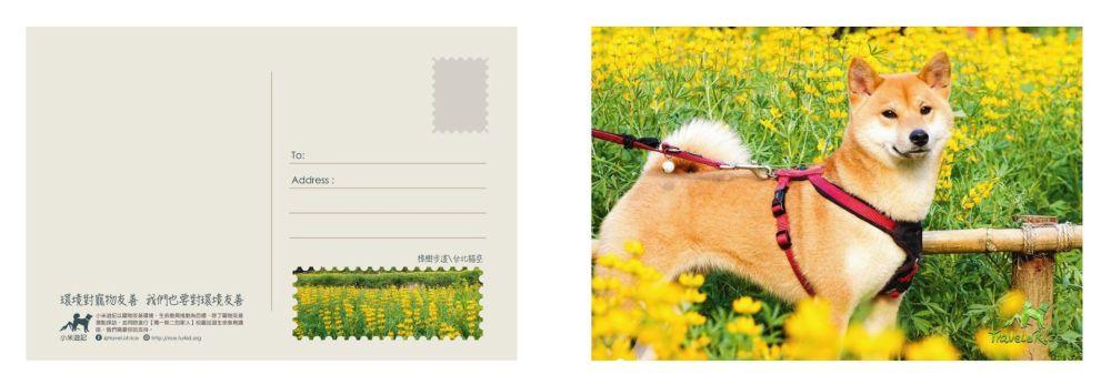 postcard_05