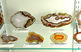Agates on exhbit - Rice Northwest Rock and Mineral Museum.