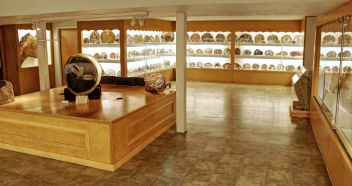 Murphy Petrified Wood Gallery and Exhibit at the Rice Northwest Rock and Mineral Museum. Photography by Julian Gray.