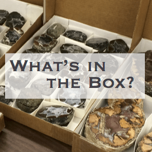 What's in the box? written over boxes of rocks and minerals.