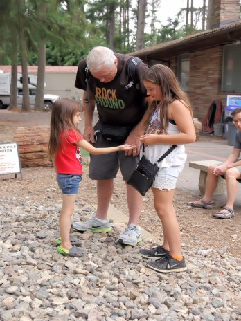 Children play in the rock pile with an adult at Summer Fest.