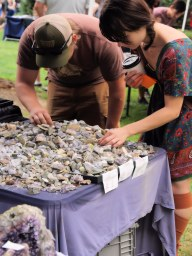 Shoppers dig through rock specimens for a good find.
