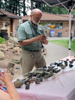Executive Director Julian Gray checks out the rocks at Summer Fest vendor booth.