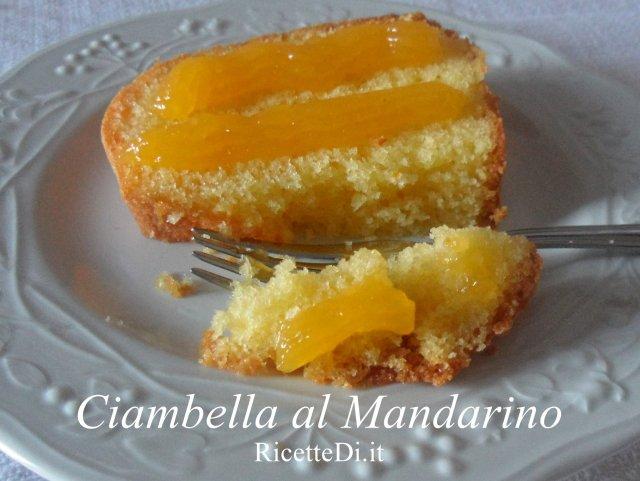 ciambella_al_mandarino_01
