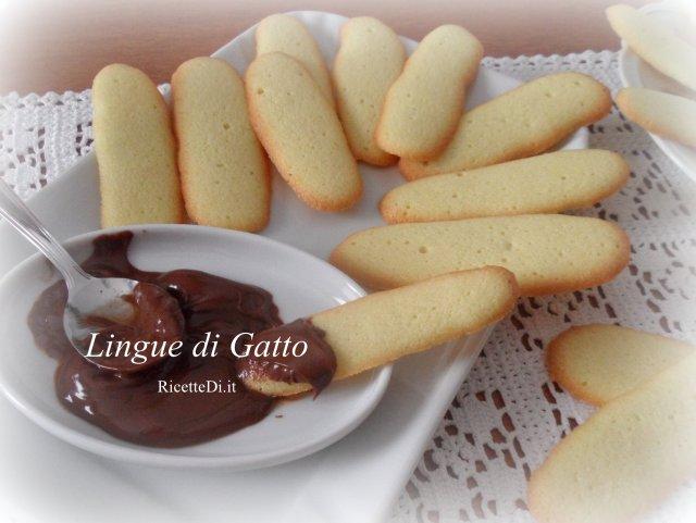 01_lingue_di_gatto
