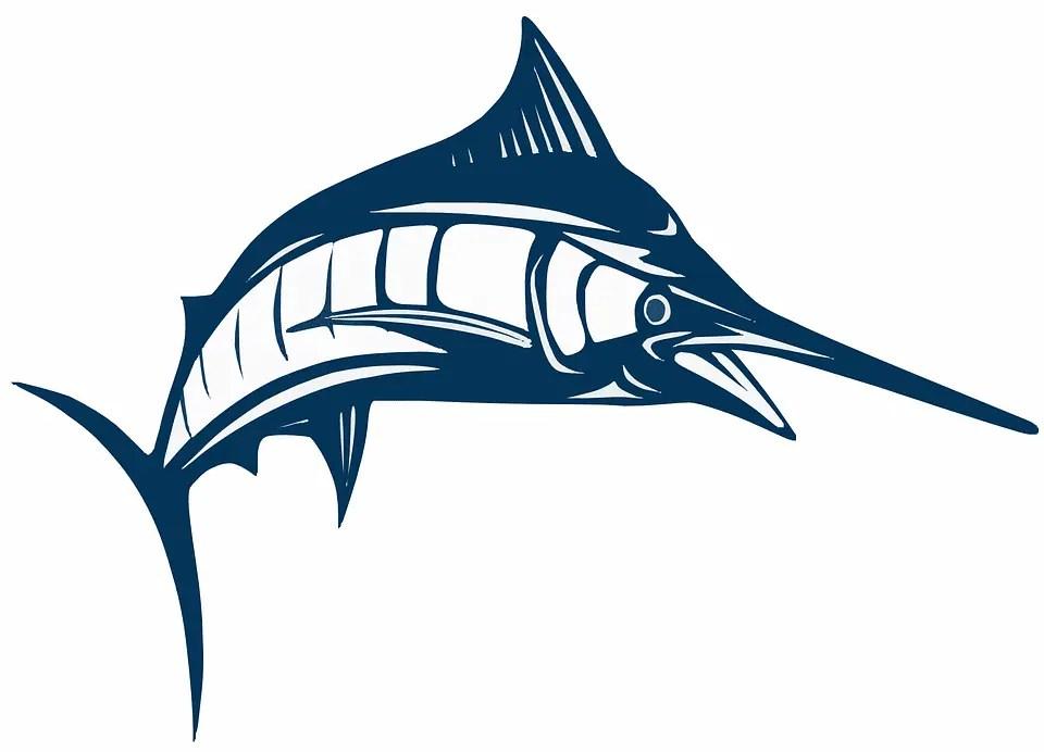 Pesce spada al salmoriglio