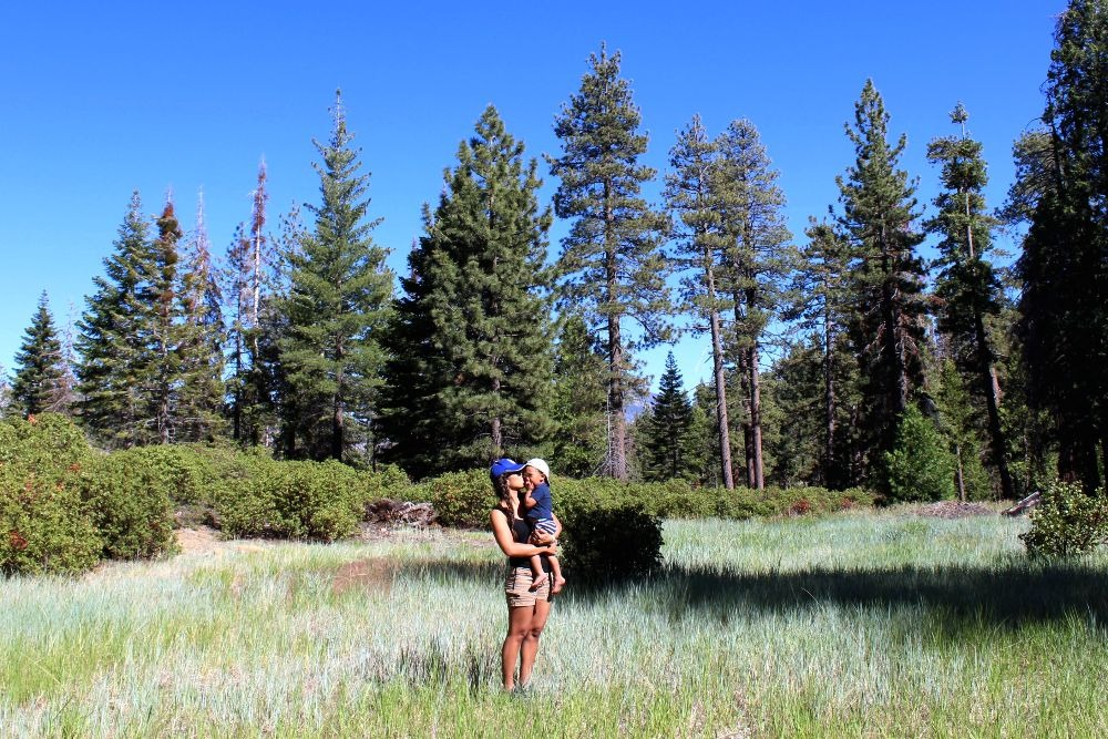 Camping at Holey Meadow Campground 1