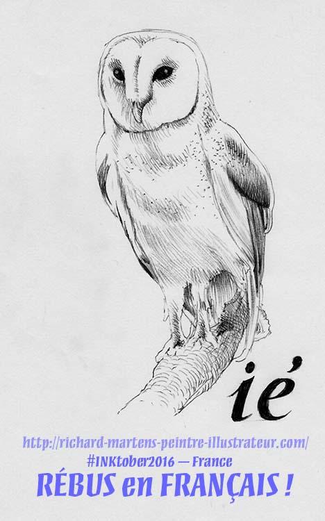 """Dessin d'un oiseau, réalisée au stylo-bille noir sur papier blanc, par Richard Martens, pour #INKtober2016 nº 13 : """"???""""… Un rébus ! #thefrenchINKtober #thefrenchINKtober2016 #INKtober #INKtober2016 @jakeparker #RichardMartens"""