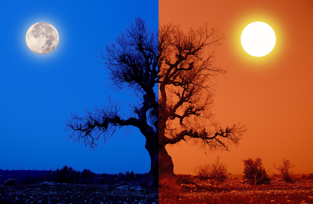 Summer Solstice and Full Moon Light of Truth – Richard Arsic