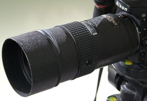 Nikon's excellent 180mm f/2.8 apparently does not get along with the autofocus of the Nikon D100.