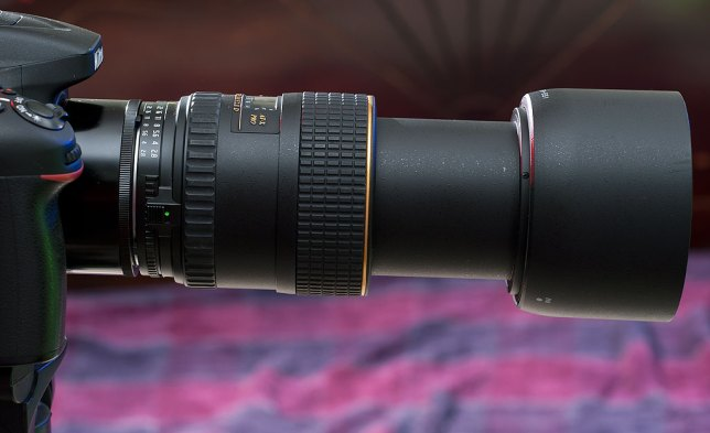 I attached my 32-year-old Nikon 27.5mm extension tube to my Tokina 100mm f/2.8 macro, allowing me to make super-macro images.