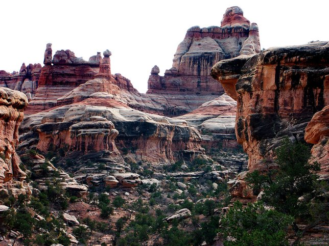 The Needles District at Canyonlands is, like the other districts, labyrinthian, as in this November 2002 image.