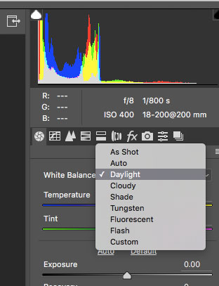 Many different software programs, like Adobe Photoshop in this screen shot, allow you to select the white balance of a RAW file after you have shot it.