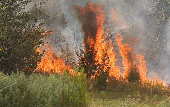 """One firefighter who arrived at the scene of today's fire in Happyland, Oklahoma described it as """"colossal."""""""