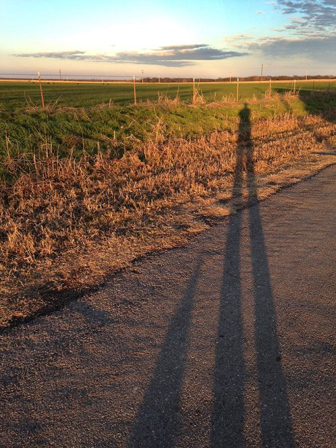 """Max and I cast shadows on the road to Ethel's house, known as """"Upper Road."""""""