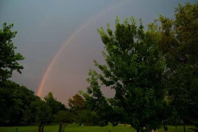 "I said, ""Wow. Honey, you have to come out here and see this."" She came out to see this and said, ""Wow!"""