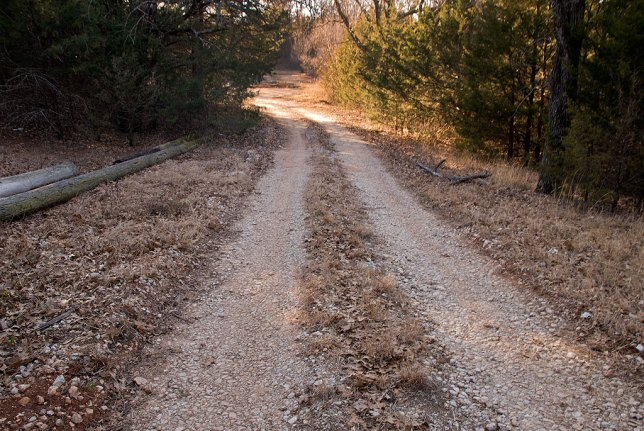 This is the oil lease road that leads to the well.