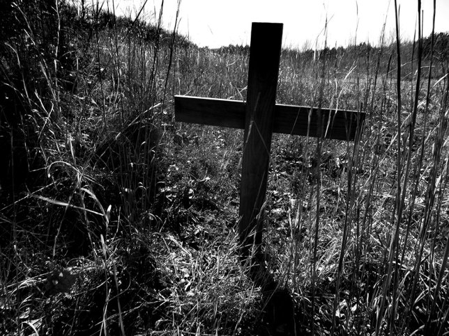 Sad eyes, crooked crosses, or a sign from the Blair Witch's Oklahoma Region? Hawken and I saw this on the trail today.