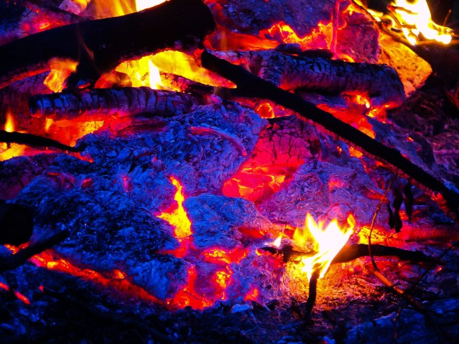 I love the look of a fire - camp fire, brush pile, fireplace fire - when it begins to go to coals and takes on deep red and blue tones, like in this image from last night's fire at my brush pile.