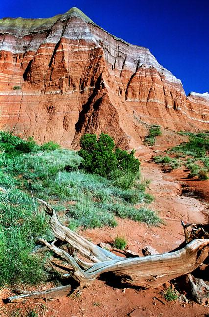 Trail, Morning, Palo Duro Canyon