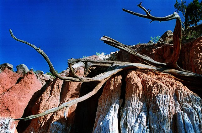 Cave and branch, south end of Palo Duro Canyon road