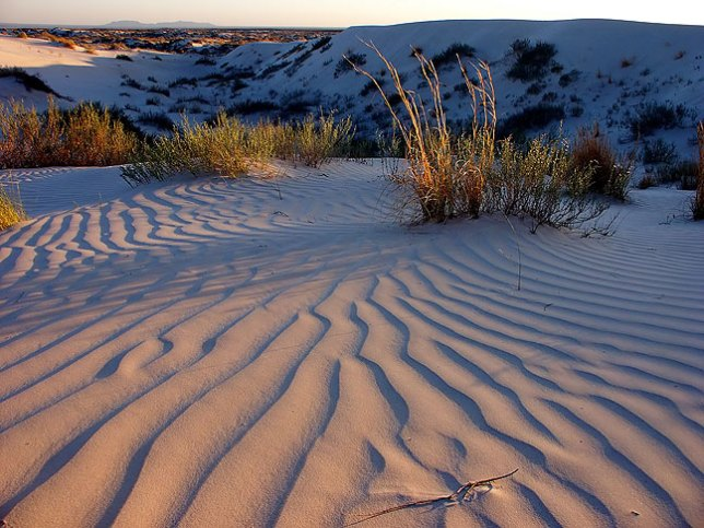 Gypsum dunes catch last light.