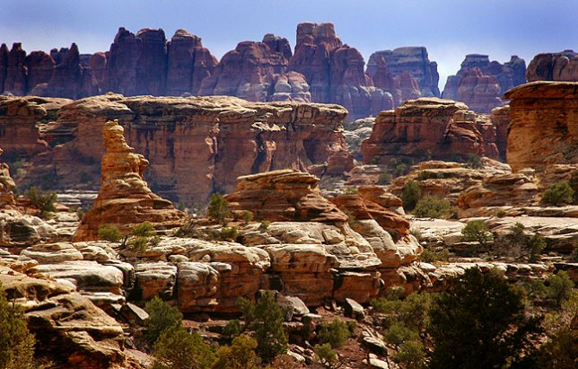 This view looks from the road near the Confluence Overlook trail, in the northern reaches of the Needles district of Canyonlands.