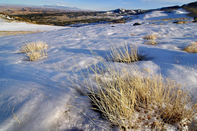 This wider view of the snow field in near Deer Peak along Utah 72 shows the Henry Mountains in the distance.