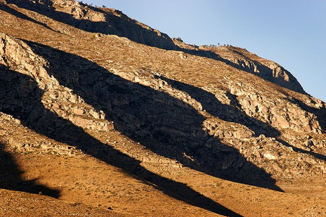 Late afternoon light creates a repeating pattern on Guadalupe Ridge.