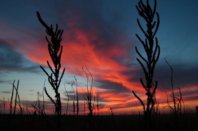 The sun sets on west Texas prairie.