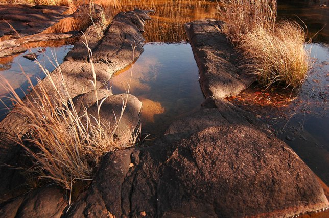 Warm afternoon light graces stones in a creek bed near Lost Lake, November 2006.