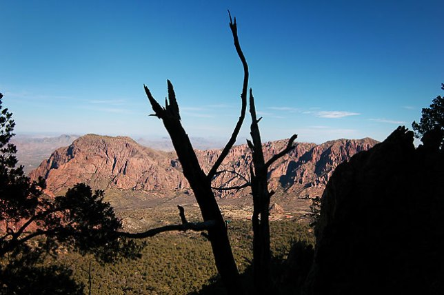 This view is from about halfway up the Emory Peak trail, Chisos Mountains, Big Bend.