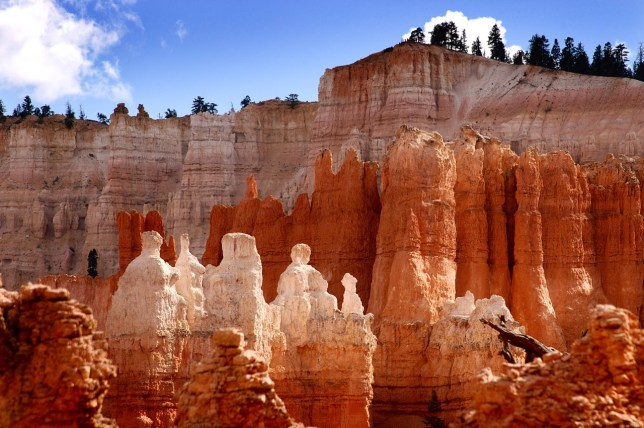 Since I was visiting in the summer, Bryce Canyon's formations were bright and colorful, but I would love to photograph them in the snow or at night.
