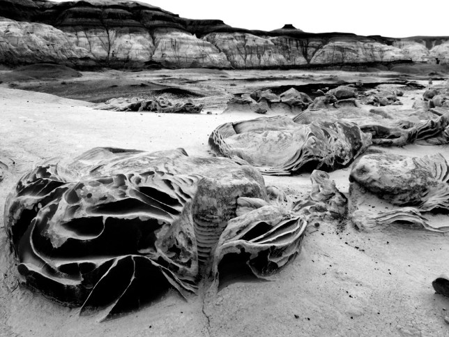 "With light subdued by clouds and blowing dust, I chose to shoot the ""Cracked Eggs"" at the Bisti in black-and-white."