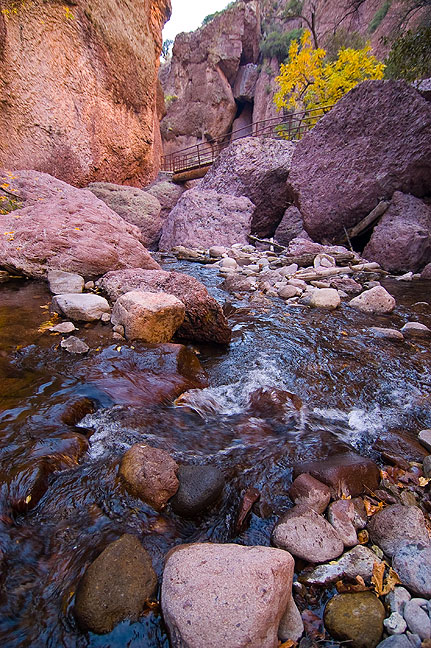 The trail continues up Whitewater Creek, leading to several short downclimbs to the creek itself.